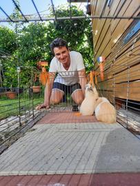 Uwe Becker mit den Meerschweinchen