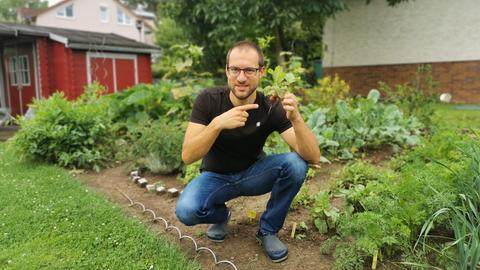 Jürgen Scholle hält in seinem Garten ein Radieschen in der Hand. Er hat es gerade aus der Erde gezogen. Er kniet auf dem Boden und trägt eine blaue Jeans und ein schwarzes T-Shirt. Er hat kurze, dunkle Haare und eine Brille. Im Hintergrund ist eine dunkelrote Gartenhütte zu sehen.