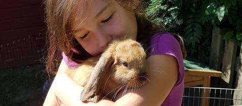 Ausgesetzte Kaninchen