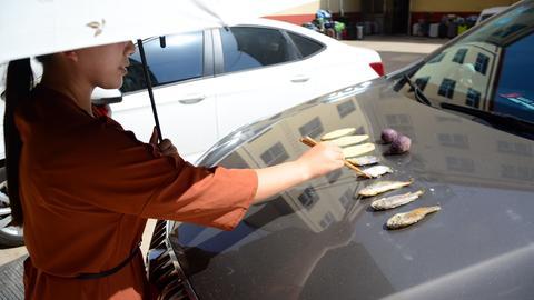 Eine Frau brät auf einer Motorhaube Fisch und Süßkartoffeln