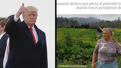 Donald Trump - Dolores Leis Antelo