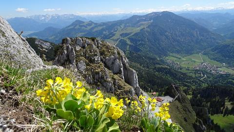 Unterwegs zu Bayerns Alpen und Seen