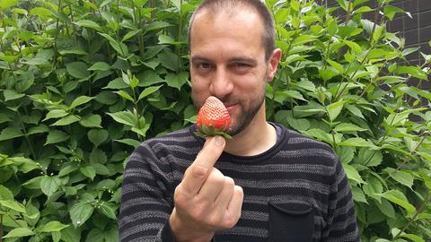 Jürgen Schollle ist ein Erdbeerfan.