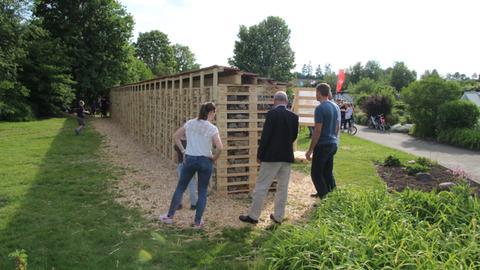 Das Weltrekord-Insektenhotel in Fulda