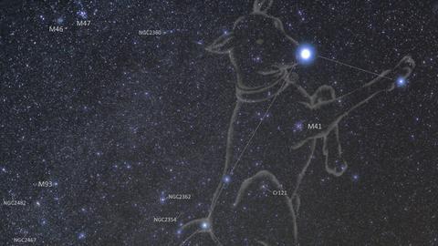 Das Sternbild des Großen Hundes