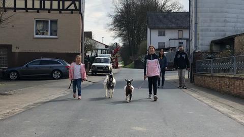 Familie Schaub und ihre Ziegen