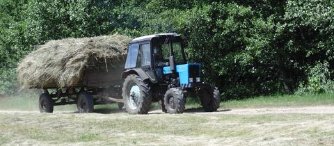 Traktor zieht einen mit Heu beladenen Wagen