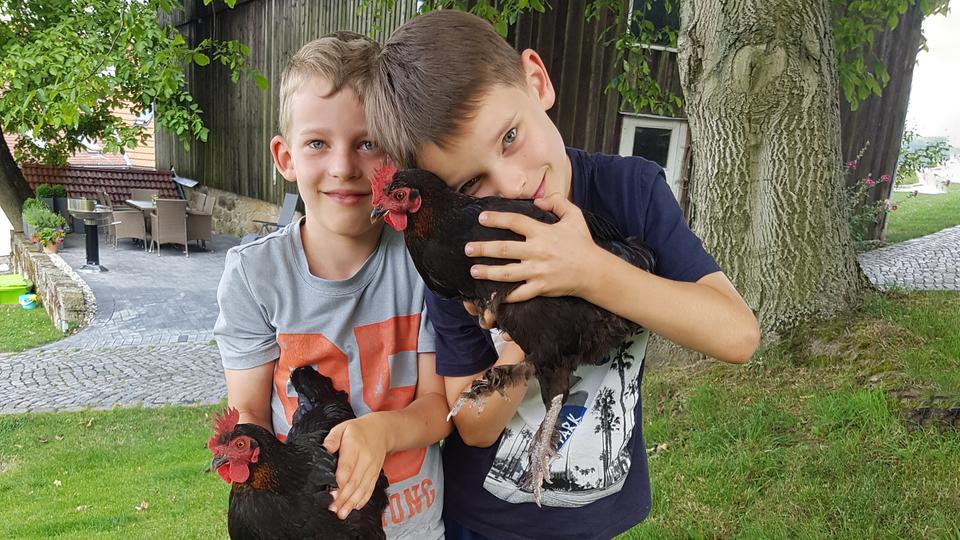 Veras Söhne mit Hühnern