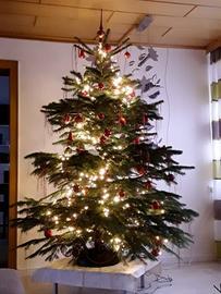 Weihnachtsbaum von Jutta Kaul aus Darmstadt