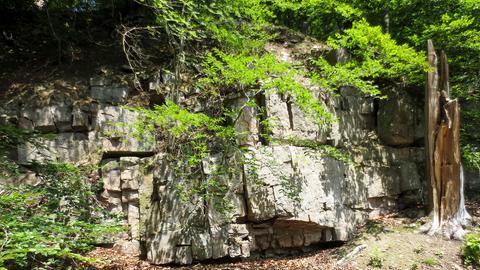 Felsformationen am Kleinen Grimmpfad