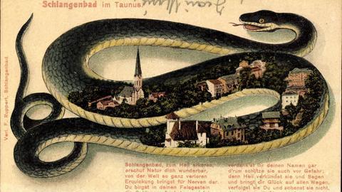 Schlangenbad - historische Postkarte