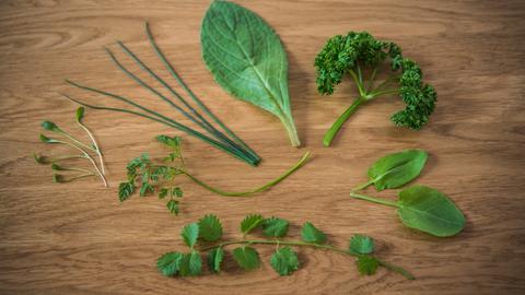 Die sieben Kräuter der Grünen Soße