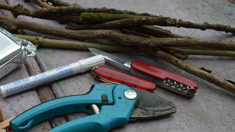 Pflanzenstäbe aus Holz