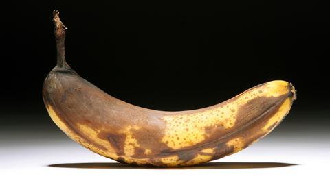 Reife Banane mit braunen Flecken auf der Schale
