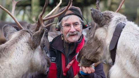 """Uwe Kunze, der sich selber als Rentier-Mann bezeichnet, füttert im Lappland-Lager """"Björkträsk"""" im Tierpark Sababurg bei Hofgeismar im Reinhardswald zwei Rentiere."""