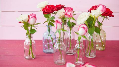 Verschiedenfarbige Rosen stehen in Vasen