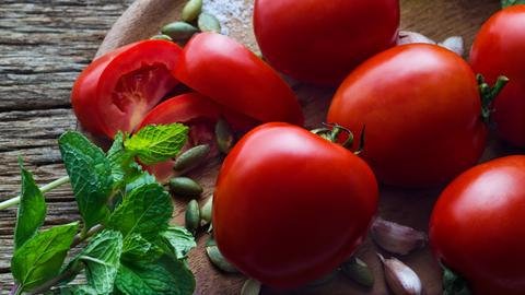 Tomate Minze