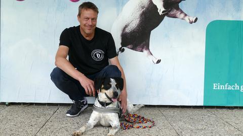 Terrier-Mischling Charly aus dem Tierheim in Felsberg-Beuern