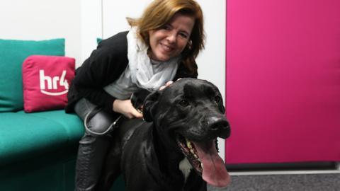Labrador-Mix Hannes mit Anke Oldewage