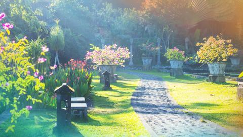 Ein schöner Weg schmückt jeden Garten